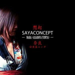 Sayaconcept