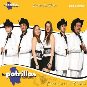 Los Potrillos de Chihuahua アーティスト写真