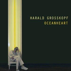 Harald Grosskopf アーティスト写真