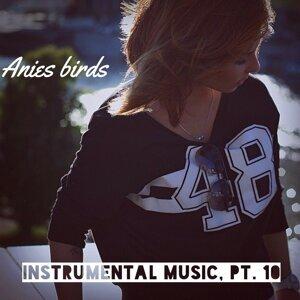 Anies Birds 歌手頭像