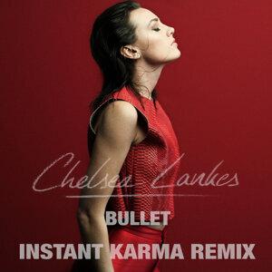 Chelsea Lankes 歌手頭像