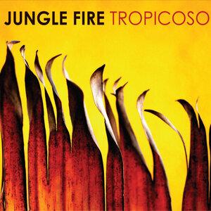 Jungle Fire 歌手頭像