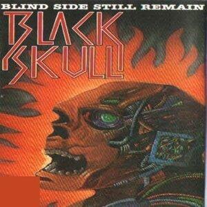Black Skull 歌手頭像