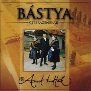 Bástya Citera Ensemble 歌手頭像