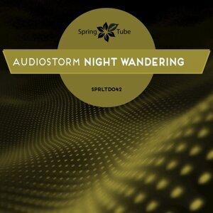 AudioStorm 歌手頭像