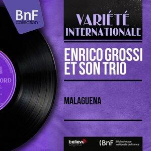 Enrico Grossi et son trio 歌手頭像