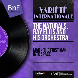 The Naturals, Ray Ellis and His Orchestra 歌手頭像