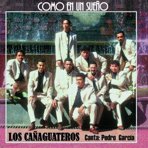Los Cañaguateros 歌手頭像