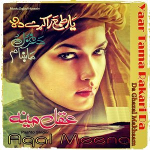 Aqal Meena 歌手頭像