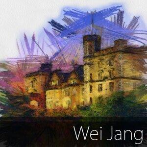 Wei Jang アーティスト写真