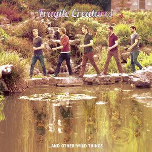 Fragile Creatures 歌手頭像