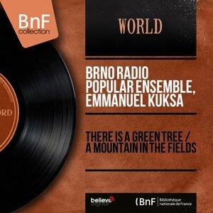 Brno Radio Popular Ensemble, Emmanuel Kuksa 歌手頭像