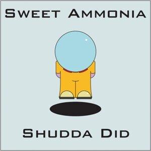 Sweet Ammonia 歌手頭像