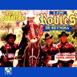 Los Robles de Reynosa 歌手頭像