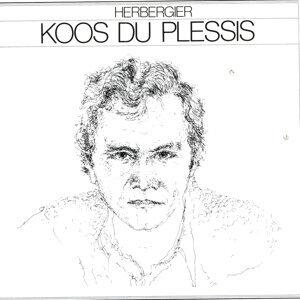 Koos Du Plessis アーティスト写真