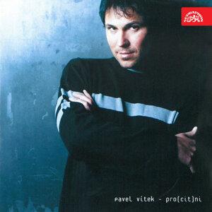 Pavel Vítek 歌手頭像