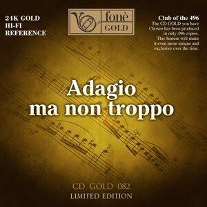 Salvatore Accardo, I Musici, Charles Rosen 歌手頭像