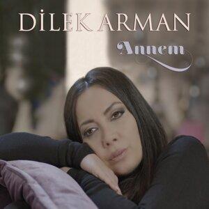 Dilek Arman 歌手頭像