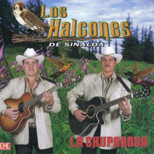 Los Halcones De Sinaloa 歌手頭像