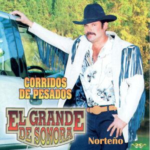 El Grande De Sonora 歌手頭像