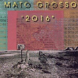 Mato Grosso 歌手頭像