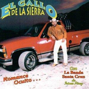El Gallo De La Sierra アーティスト写真