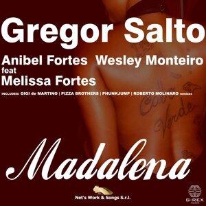 Gregor Salto, Anibel Fortes, Wesley Monteiro 歌手頭像
