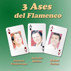 Juanito Valderrama | Antonio Molina | Rafael Farina 歌手頭像