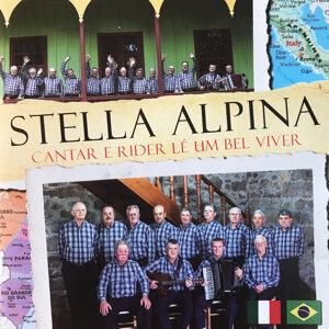 Stella Alpina 歌手頭像