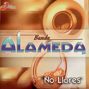 Banda Alameda 歌手頭像