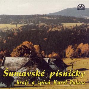 Malá dechová hudba Šumavanka 歌手頭像