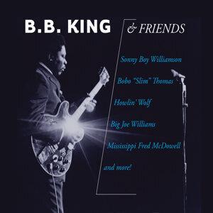 B.B. King & Friends 歌手頭像