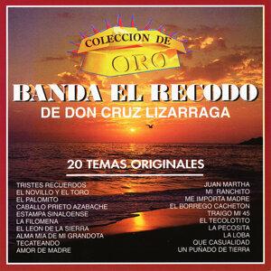 Banda El Recodo De Don Cruz Lizarraga 歌手頭像