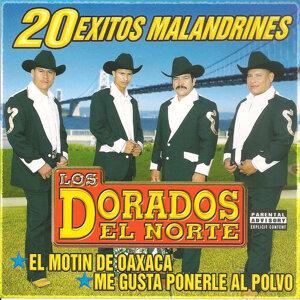 Los Dorados Del Norte 歌手頭像