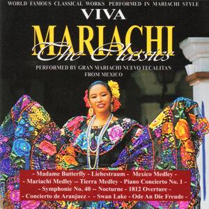 Gran Mariachi Nuevo Tecalitan アーティスト写真