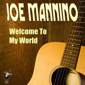 Joe Mannino 歌手頭像