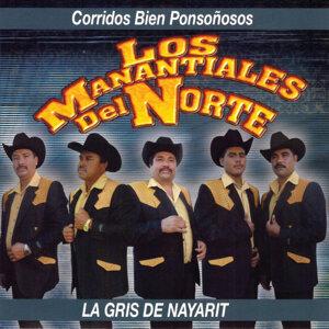 Los Manantiales Del Norte 歌手頭像