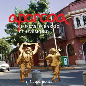 Aparcoa