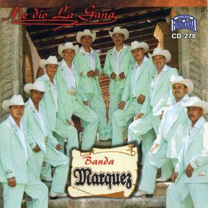 Banda Marquez 歌手頭像