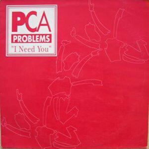 PCA Problems アーティスト写真