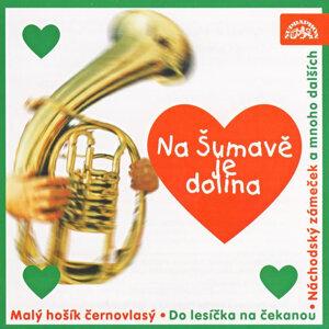 Dechová hudba Plzeňačka 歌手頭像
