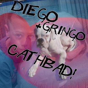 Diego & Gringo 歌手頭像