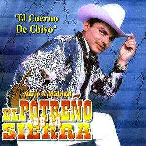 El Potreño De La Sierra 歌手頭像