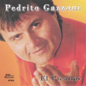 Pedrito Gazzoni 歌手頭像