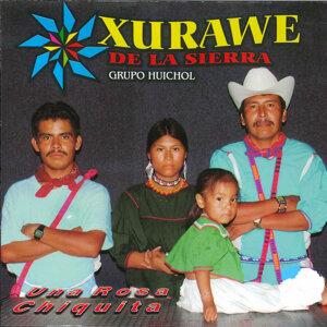 Xurawe de La Sierra Grupo Huichol 歌手頭像