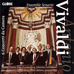 Ensemble Senario 歌手頭像