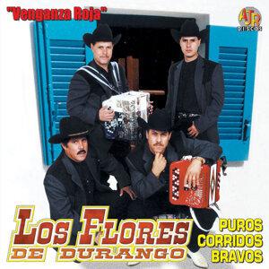 Los Flores de Durango アーティスト写真