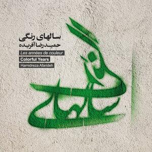 Hamidreza Afarideh アーティスト写真