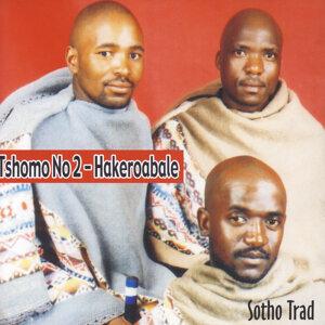 Tshomo No 2 歌手頭像