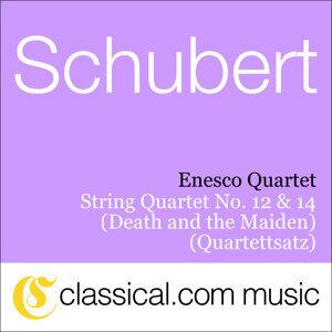 Enesco Quartet 歌手頭像